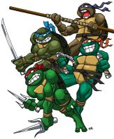 ninja turtles by rubear