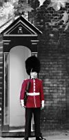 Red Guard in London by bullispace