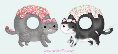 Kitty Donuts by Ainiwaffles