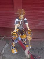 Sp Edition Sora Master Form by l3xxybaby
