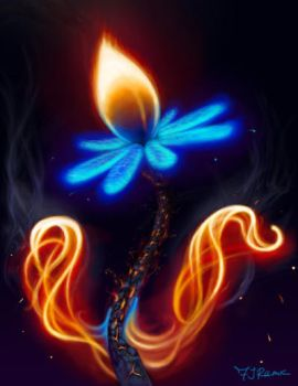 Fire Flower by fr3rdsky