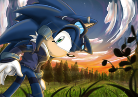 Chance the Hedgehog by S-concept