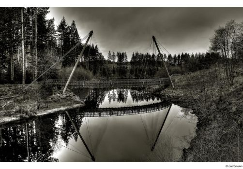 Kielder forest bridge by Leeby
