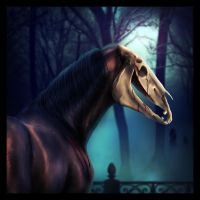 Pet Semetary by VIP-EquineArt