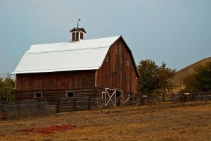 Sanders County Barn by quintmckown