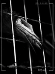 Caged- teaser by Tapwing