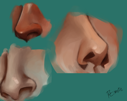 nose study #1 by lite33