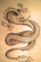 Japanese Traditional Dragon by rizb0