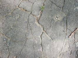 Cracked Street texture. by Trippy-CS