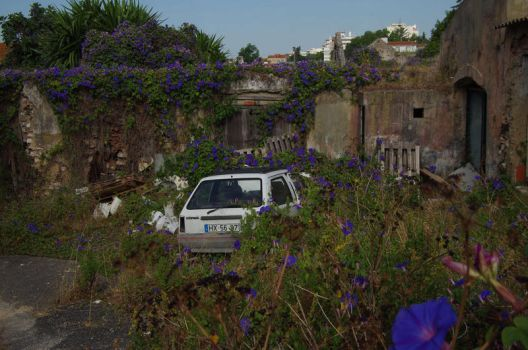 a car with a private cemetery by Pippa-pppx
