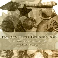 Ischarm Shell Brushes 002 by ischarm-stock