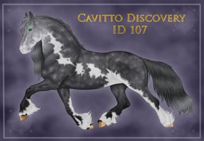 Cavitto Discovery ID 107 by ThatDenver