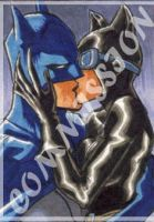 Commission - Batman x Catwoman by eisu