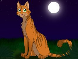 Rusty - Warrior cats by PotatoLynx