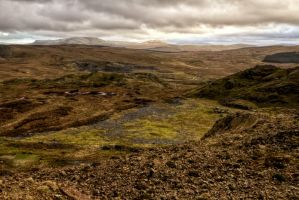 Bleak view by CharmingPhotography