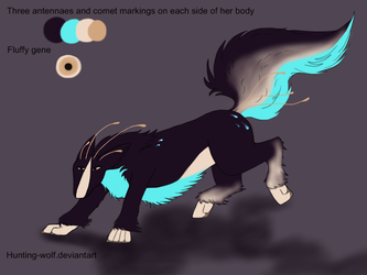 Nebula ref sheet aurei by Hunting-wolf