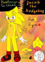 .:Ref:. Jacob the Hedgehog by Fire-For-Battle