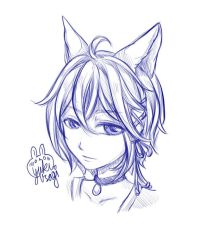 Fox Boy Head Sketch by xXYukiNoUsagiXx