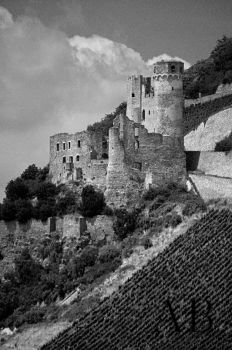 Castle Ehrenfels, Germany by sandy100000951