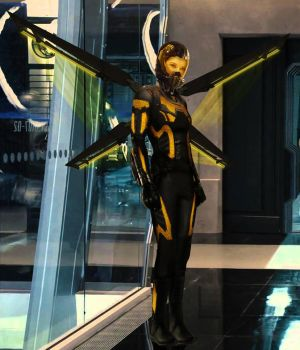 Wasp by RandomFilmsOnline