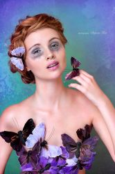 butterfly by Violetessa