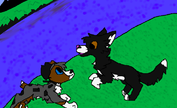 Molly and Talon Playing by TheFluffyKifa