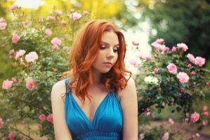 summer roses 2. by photosofme