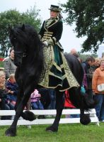 Green Lady On Friesian 03 by ponystock