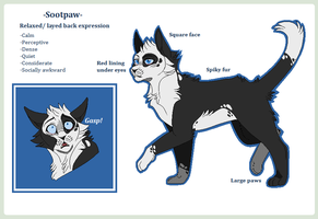 Sootpaw .Reference sheet. by CHAR-C0AL