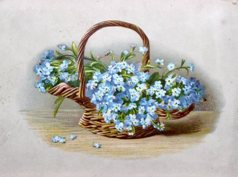 Victorian Advertising - Forget-me-nots by Yesterdays-Paper