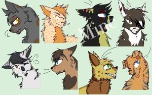 Free Warrior cats adoptables (closed ) by Darksoul44Adopts