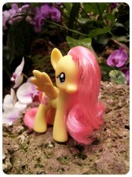 Fluttershy in the Garden by MissSinger