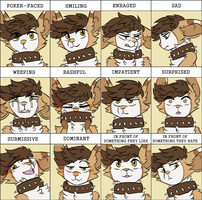 the many expressions of my tfm mouse by rottingichor
