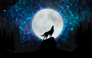 Wild Wolf by VectorPicture