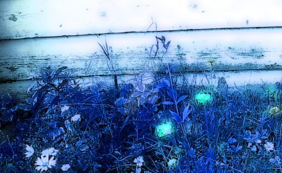 Garden in Blue by A-A-Cheshire