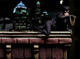 Catwoman on the rooftop by Valor1387