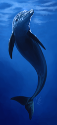 Ecco the Goddamn Dolphin by The7thSea
