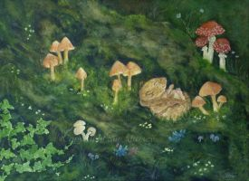 Slumbering Amongst the Mushrooms. by SueMArt