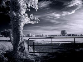 Closed Gate infrared... by MichiLauke