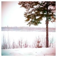 Frozen Lake I by elgrizzly