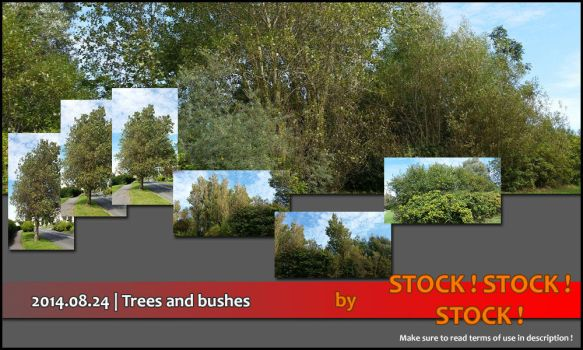 2014.08.24   Trees and bushes by Stock-Stock-Stock