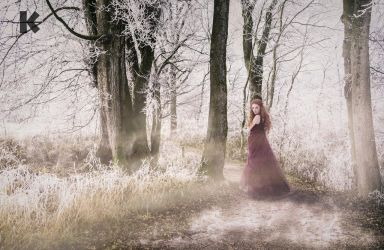 ... winter princess ... by blackkphoto