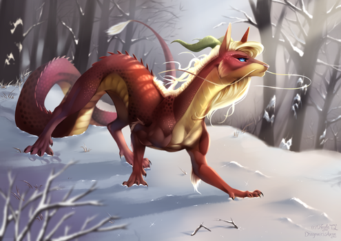 Dragon by NeylaTL