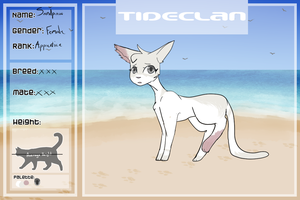 [FD] Sandpaw Application - Tideclan (redo) by Airunicorn