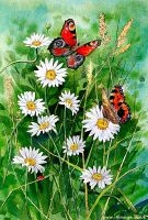 buterflys and daisys by Ezeg