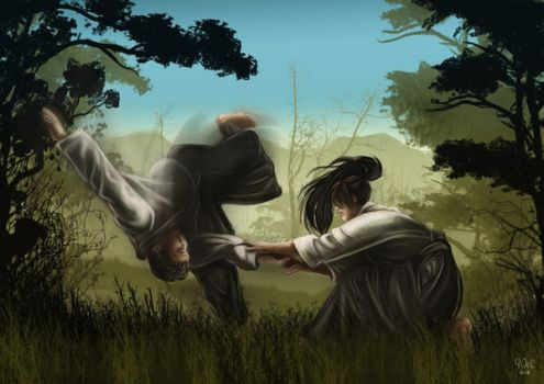 Aikido - the Way of Harmony by Cristle-Drake