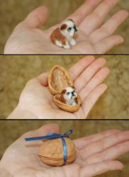 Tiny Needle Felted Bulldog Puppy Dog in a nutshell by amber-rose-creations
