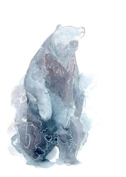 Watercolor Bear by ThreeLeaves