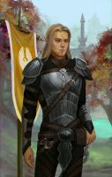Telcarion the Thalmor Justiciar (Commission) by IcedWingsArt
