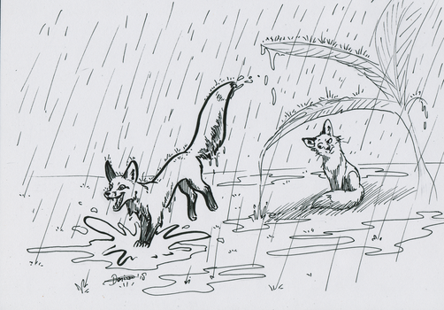 Foxtober day 20 - Rainy Day by The-fox-of-wonders